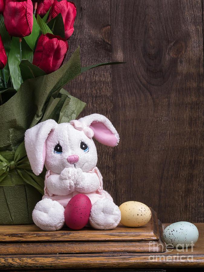 Easter Bunny Photograph