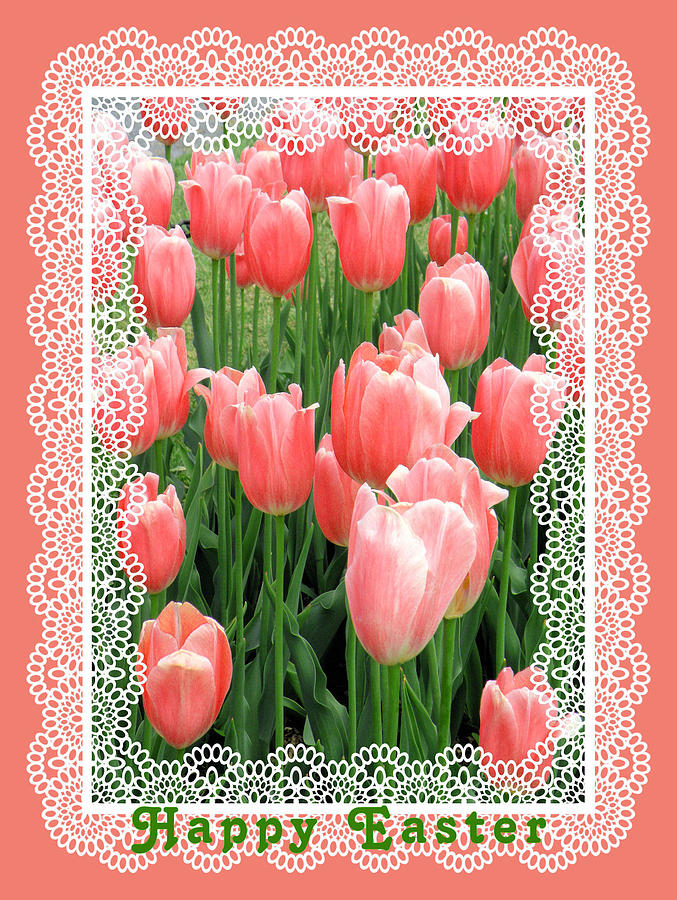 Easter Card With Tulips Photograph  - Easter Card With Tulips Fine Art Print
