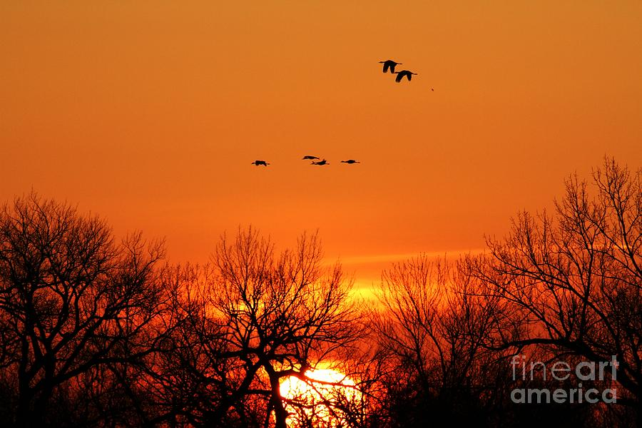 Easter Sunrise Photograph  - Easter Sunrise Fine Art Print