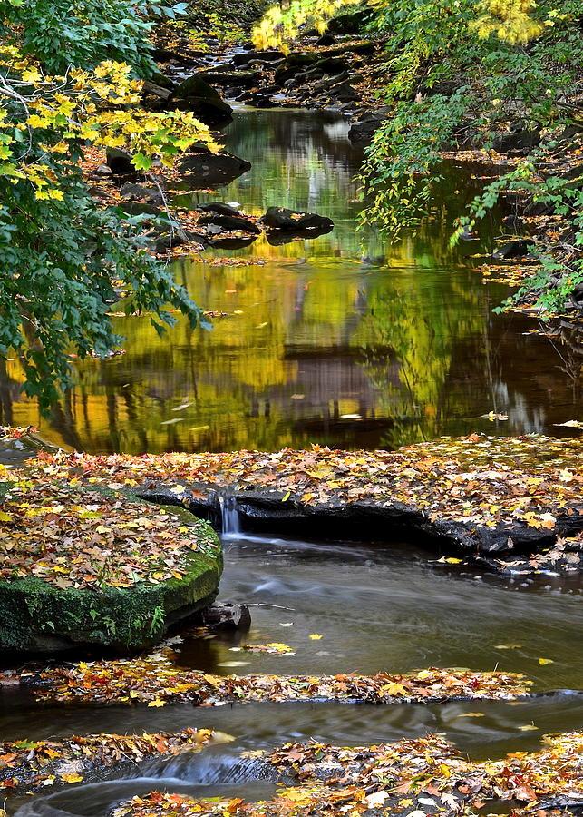 Eden Photograph