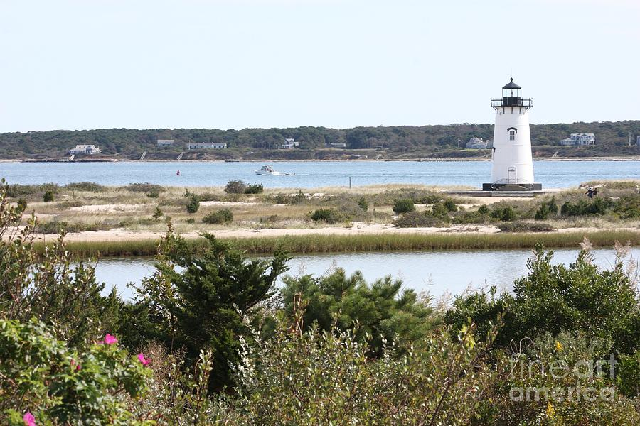 Edgartown Lighthouse With Wildflowers Photograph  - Edgartown Lighthouse With Wildflowers Fine Art Print
