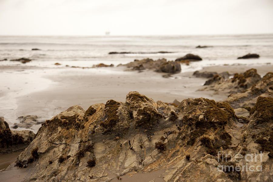 Beach Photograph - Edges by Amanda Barcon