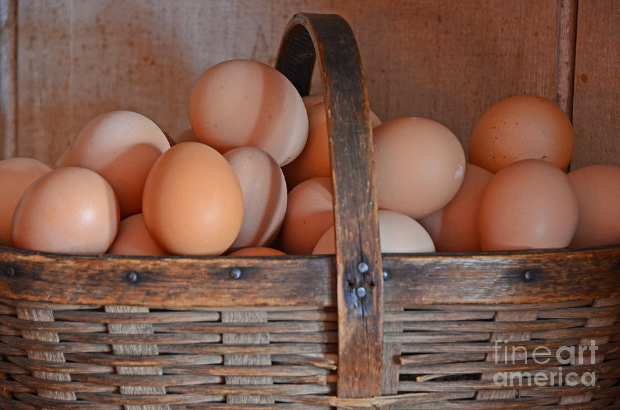 Egg Basket Photograph  - Egg Basket Fine Art Print