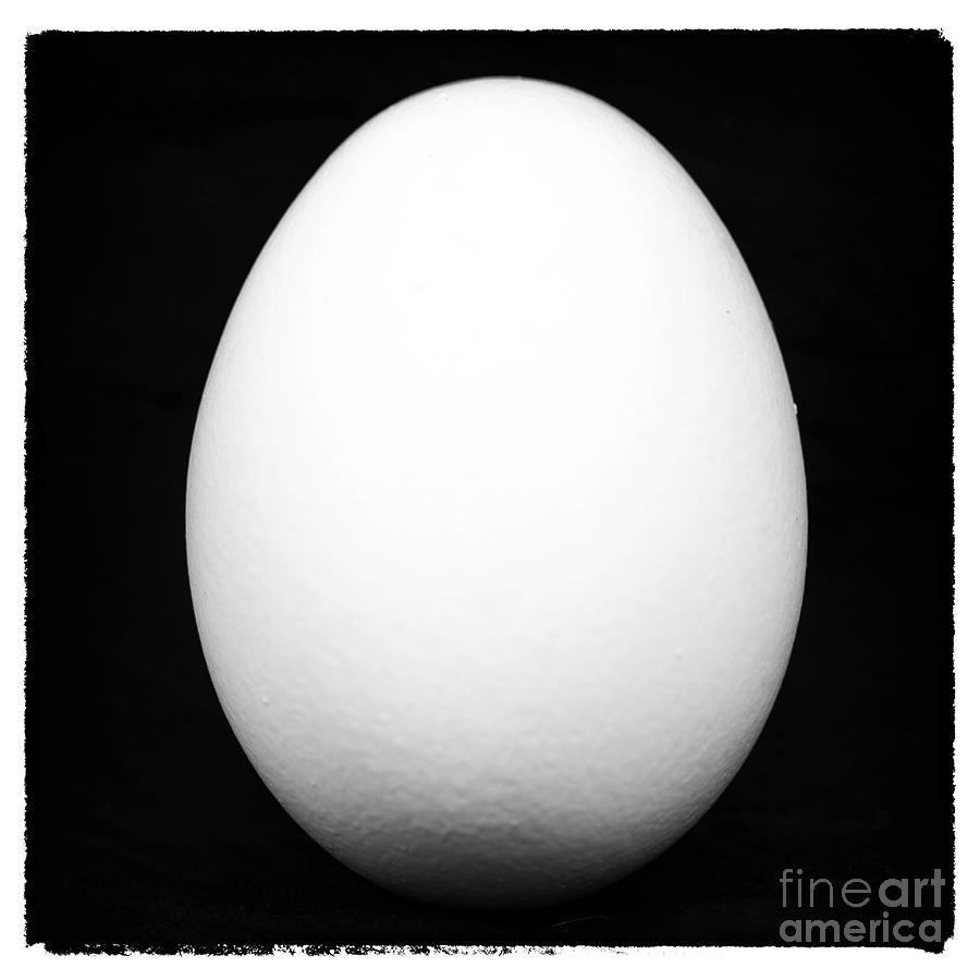 Egg Photograph
