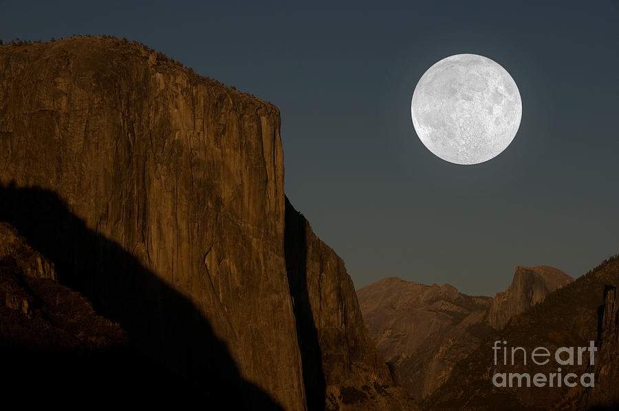 Yosemite Photograph - El Capitan And Half Dome by Mark Newman