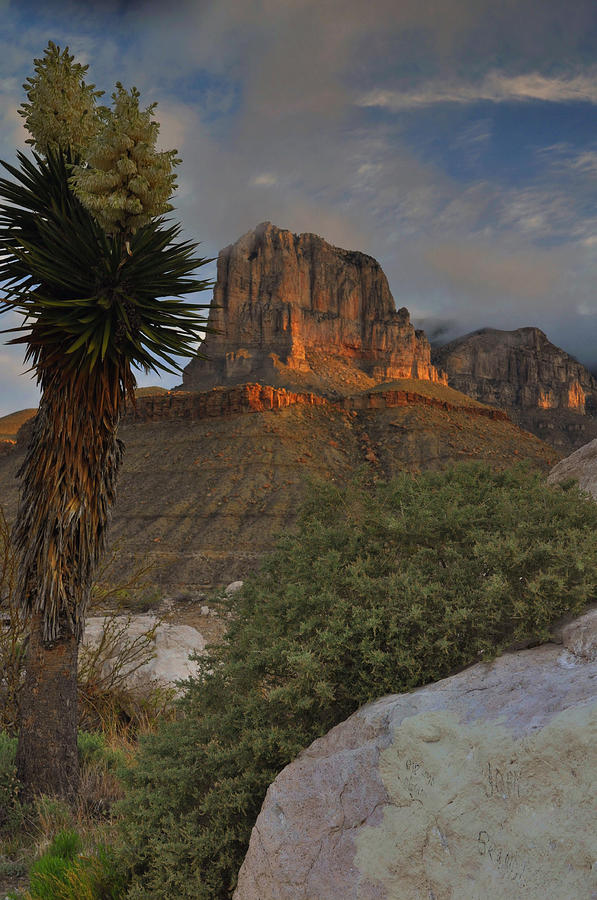 Mountains Photograph - El Capitan At Sunrise by Stephen  Vecchiotti