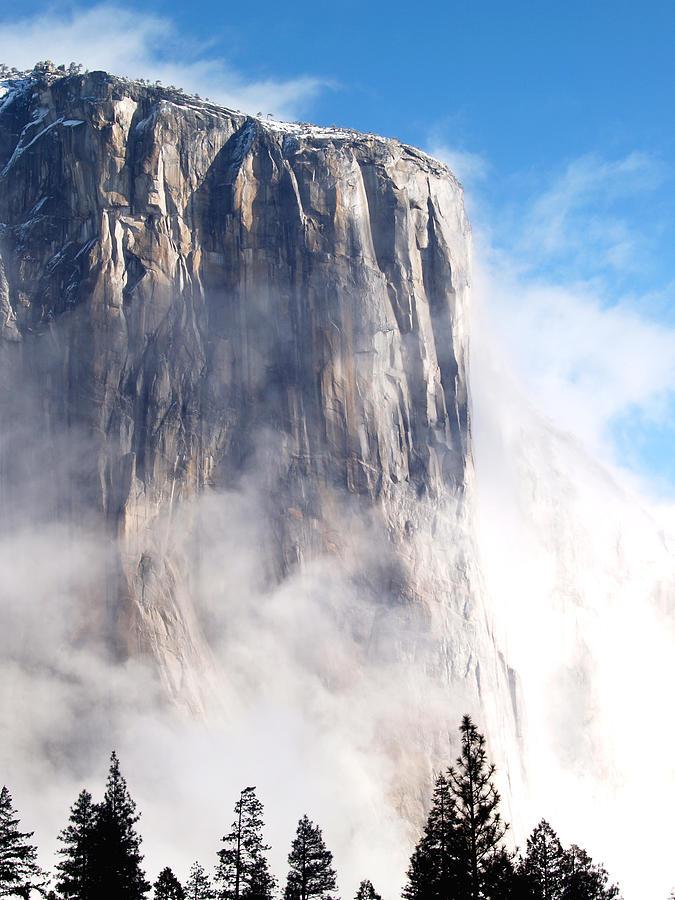Yosemite Photograph - El Capitan by Bill Gallagher
