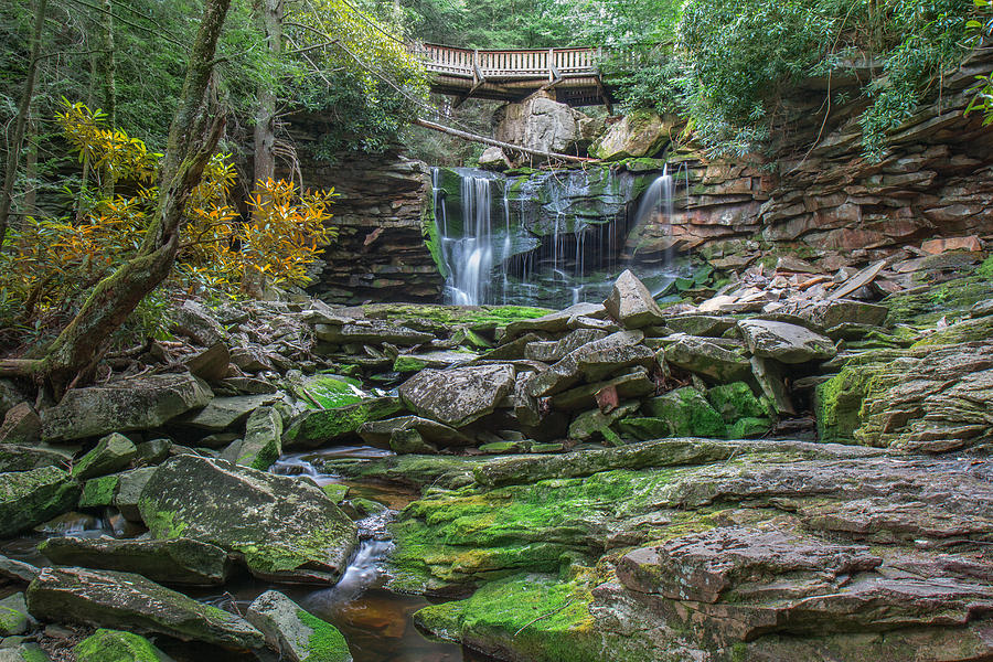 Elakala falls photograph
