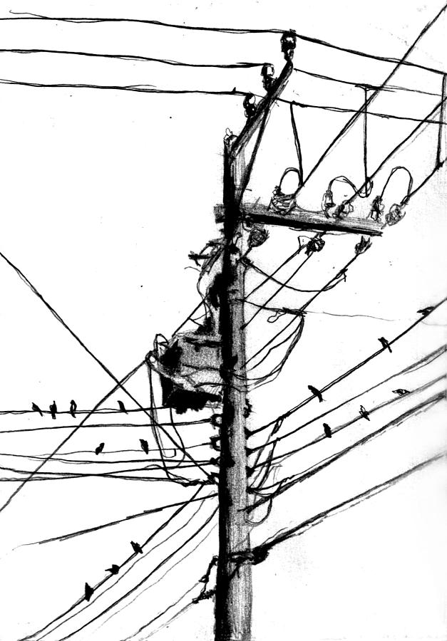 Electrical Pole With Birds Drawing