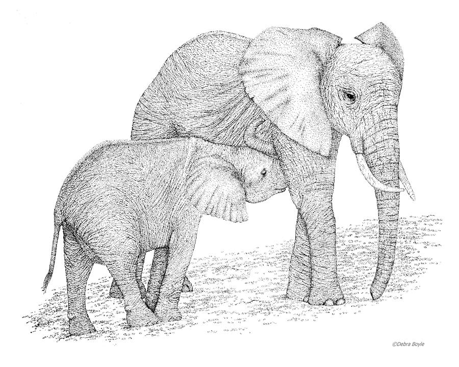 Elephant Mother Drawin...