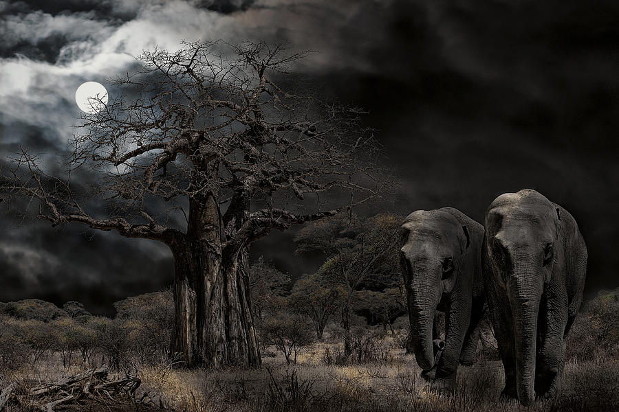 Elephants Of The Serengeti Digital Art  - Elephants Of The Serengeti Fine Art Print