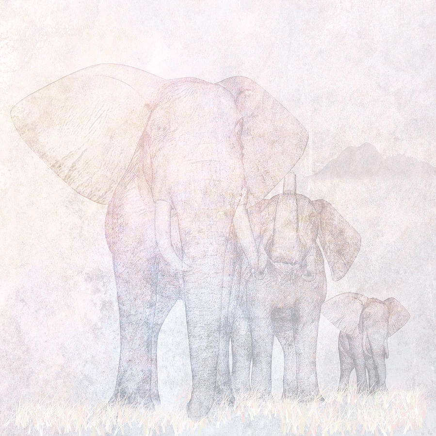 Elephants - Sketch Digital Art