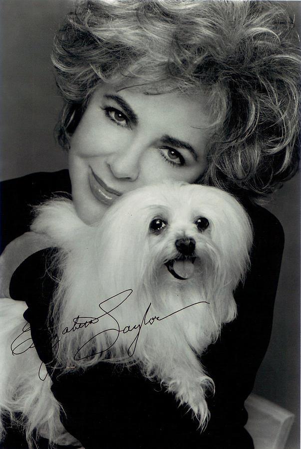 Elizabeth Taylor And Friend Digital Art