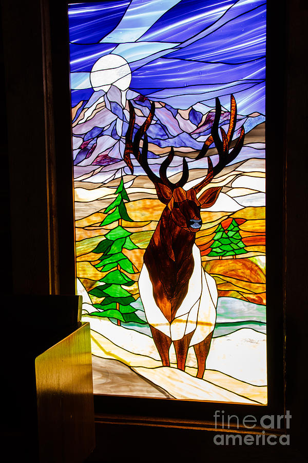 Elk Stained Glass Window Photograph