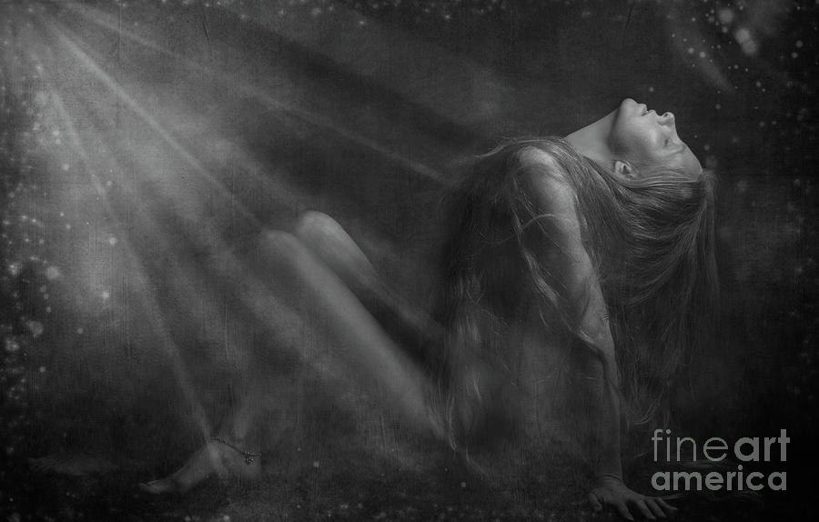 Embraced By The Light.. Photograph  - Embraced By The Light.. Fine Art Print