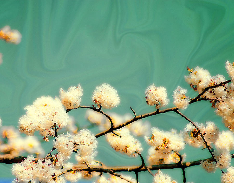 Emerald Cherry Blossom Digital Art