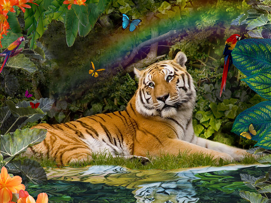 Enchaned Tigress Photograph