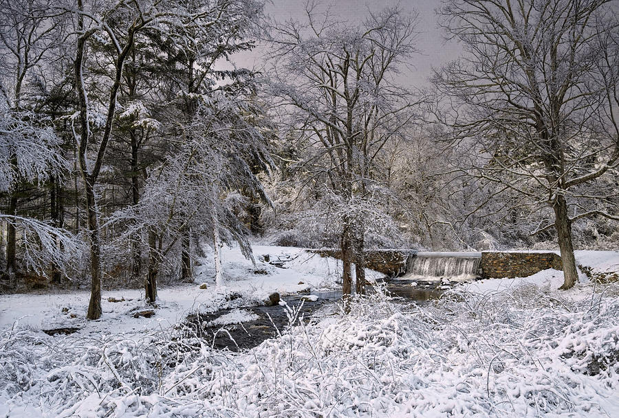 Enchanted Winter Photograph