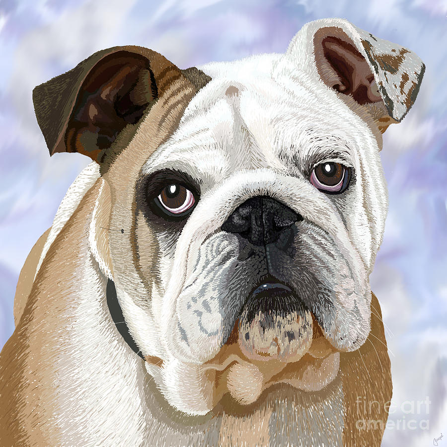 English Bulldog Portrait Digital Art