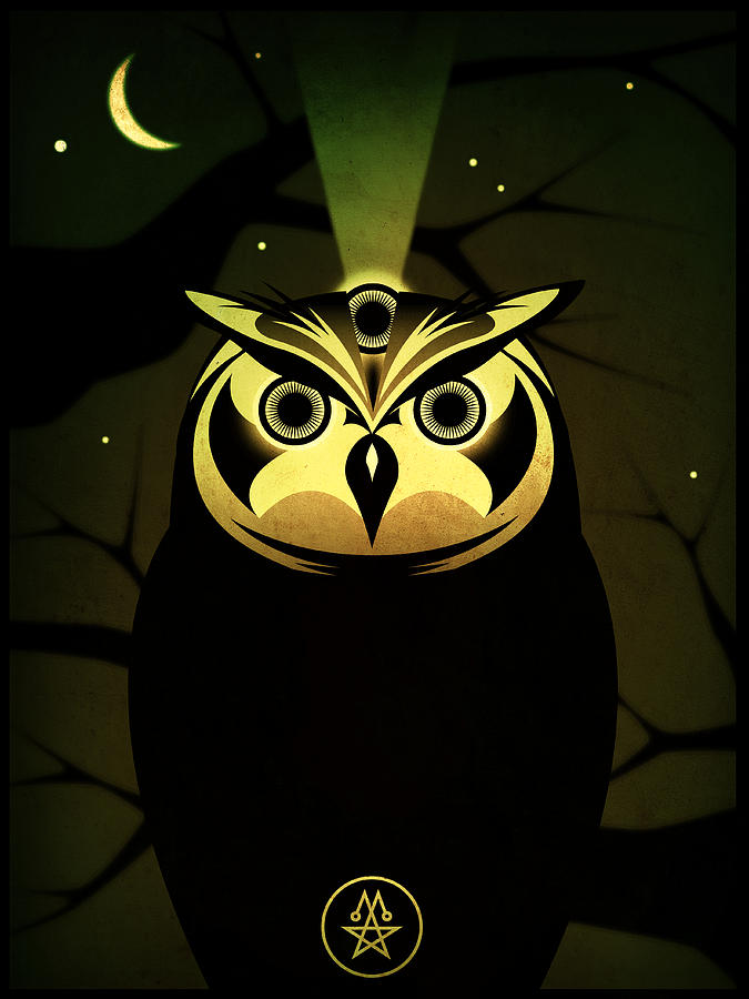 Enlightened Owl Digital Art  - Enlightened Owl Fine Art Print