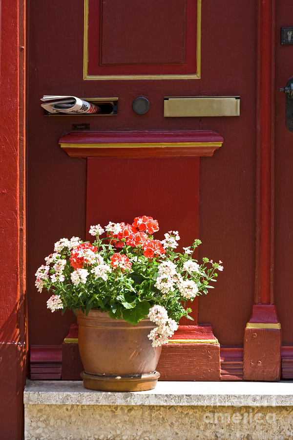 Entrance Door With Flowers Photograph