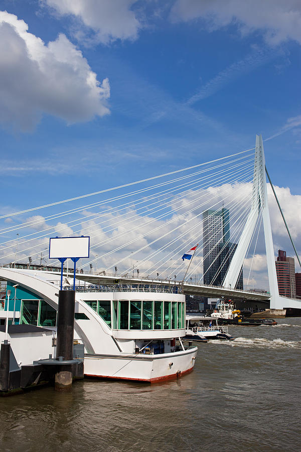 Erasmus Bridge In Rotterdam City Downtown Photograph  - Erasmus Bridge In Rotterdam City Downtown Fine Art Print