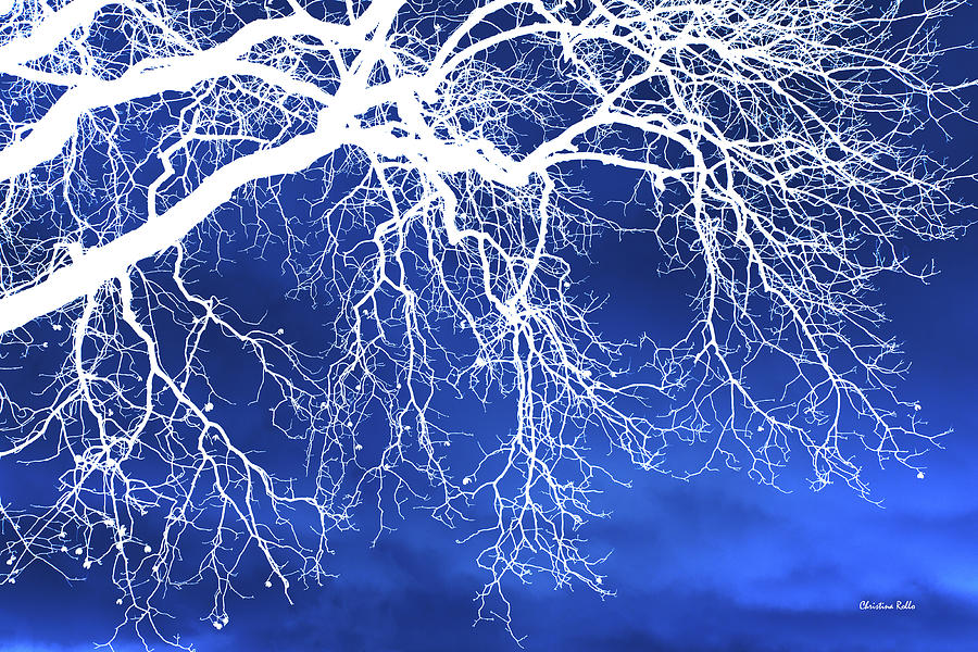 Escaping The Blues Weeping Tree Art Digital Art
