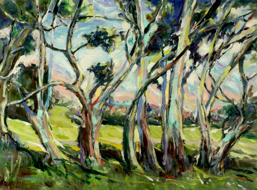 Eucalypts In Jacob's Creek by Zofia Kijak