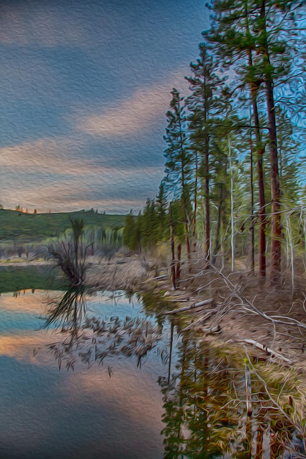 Evening On The Banks Of A Beaver Pond Painting