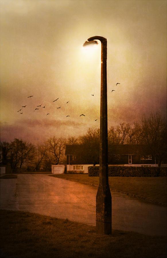 Avenue Photograph - Evening Street by Svetlana Sewell