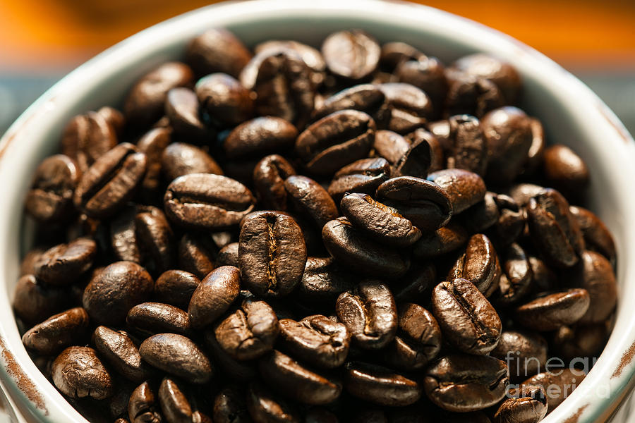 Expresso Beans Photograph