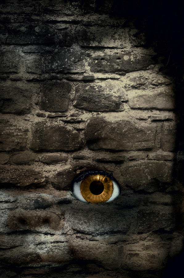Eye In Brick Wall Photograph