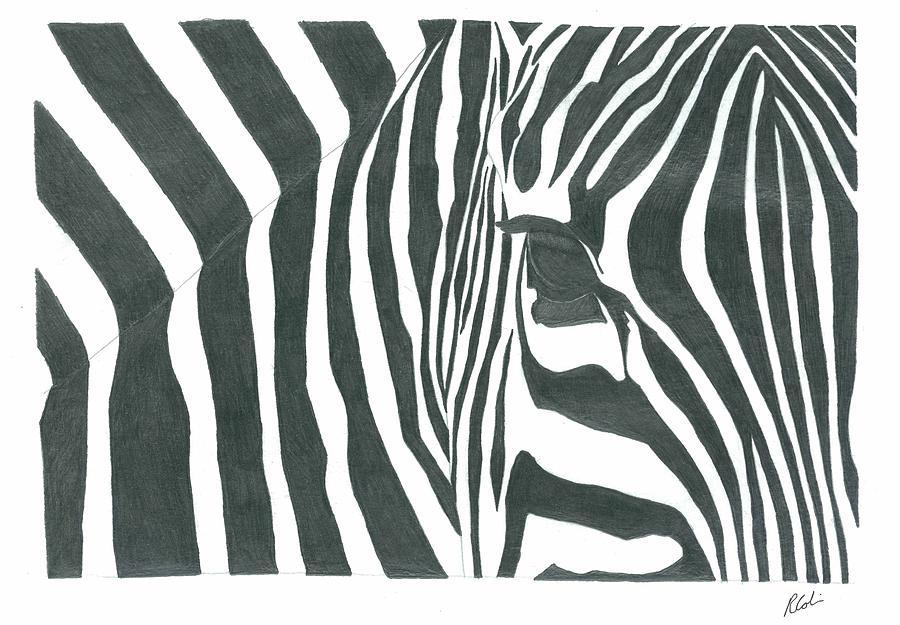 Zebra Drawing Eye Of The Zebra Drawing