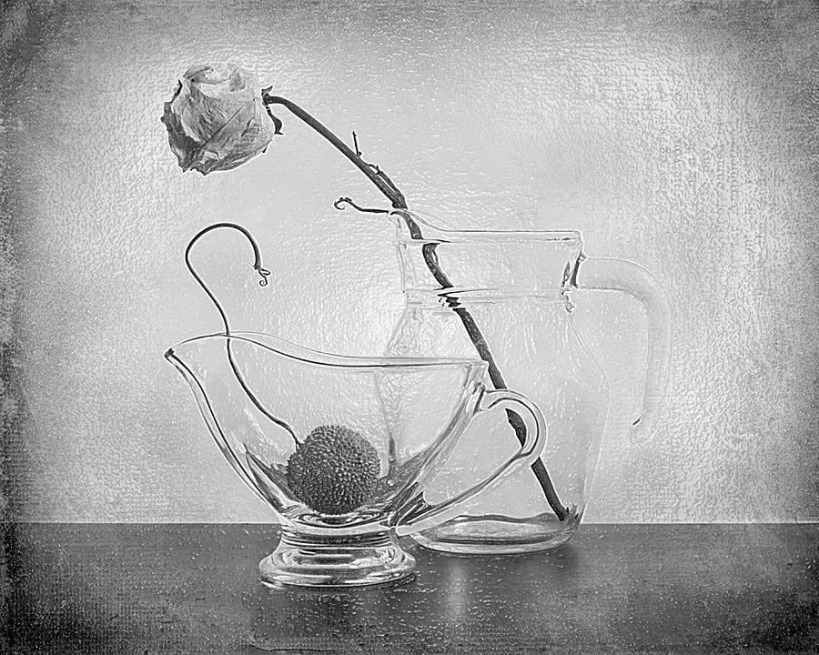 3d BW Still Life art Faded Rose