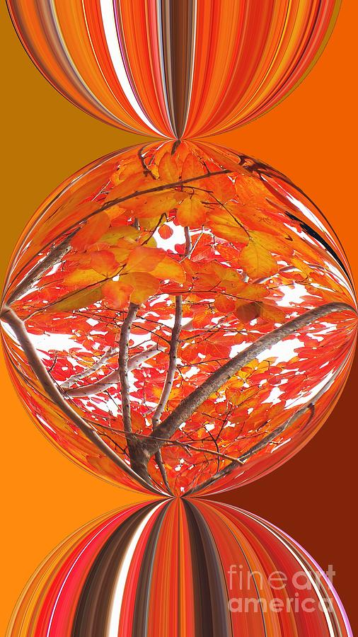Fall Ball - Autumn Leaves And Color Photograph