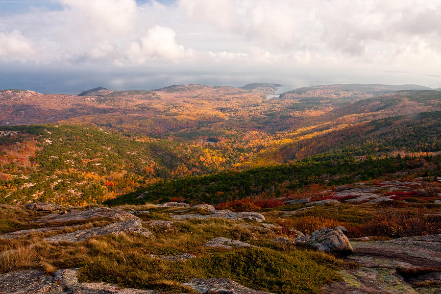 Landscape Photograph - Fall Colors Of Acadia 6656 by Brent L Ander