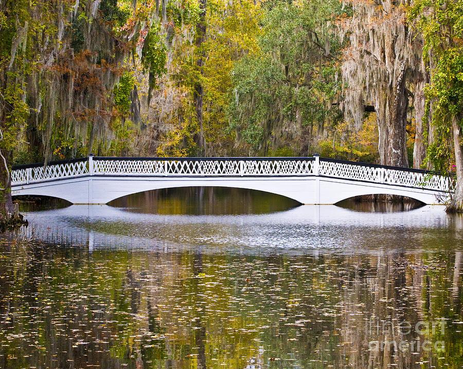 Fall Footbridge Photograph
