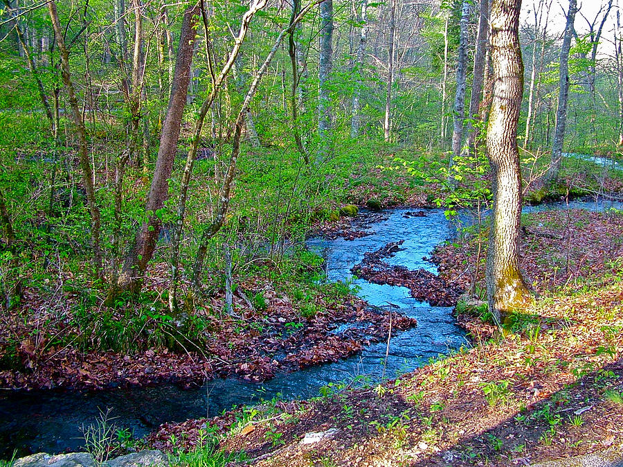 Fall Hollow At Mile 392 Of Natchez Trace Parkway-tn Photograph