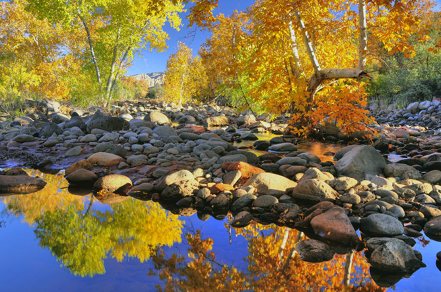 Fall In Oak Creek  Photograph