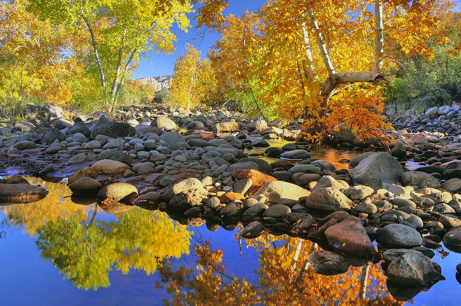 Fall Photograph - Fall In Oak Creek  by Dan Myers