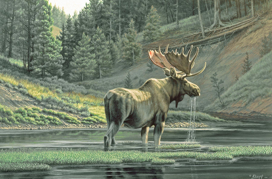 Wildlife Painting - Fall On The Yellowstone by Paul Krapf
