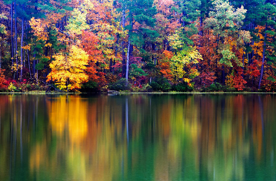 Fall Photograph - Fall Reflections by Tony  Colvin