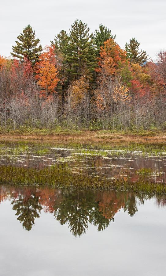 Fall Trees Reflected In Lake Chocorua Photograph