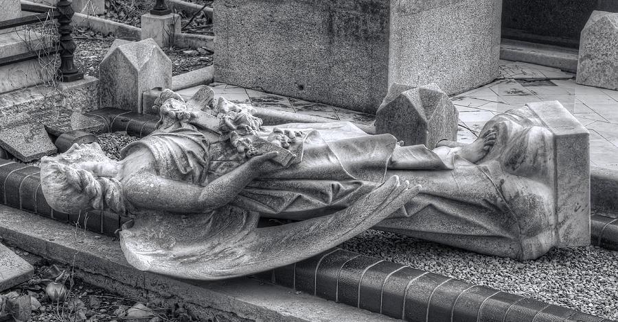 Fallen Angel Photograph