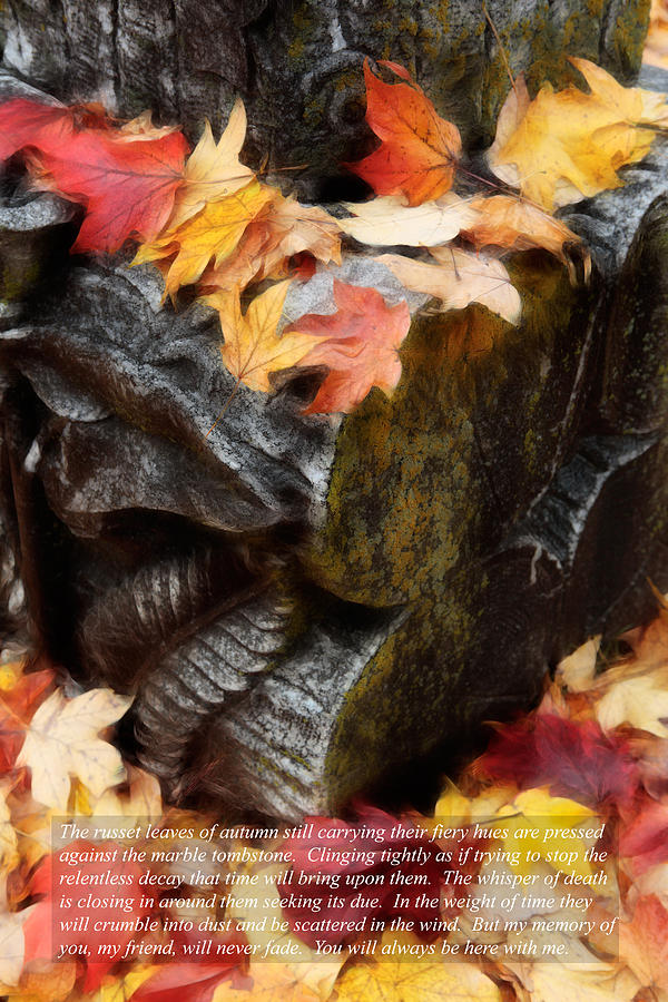 Fallen Friend Fallen Leaves II Photograph  - Fallen Friend Fallen Leaves II Fine Art Print