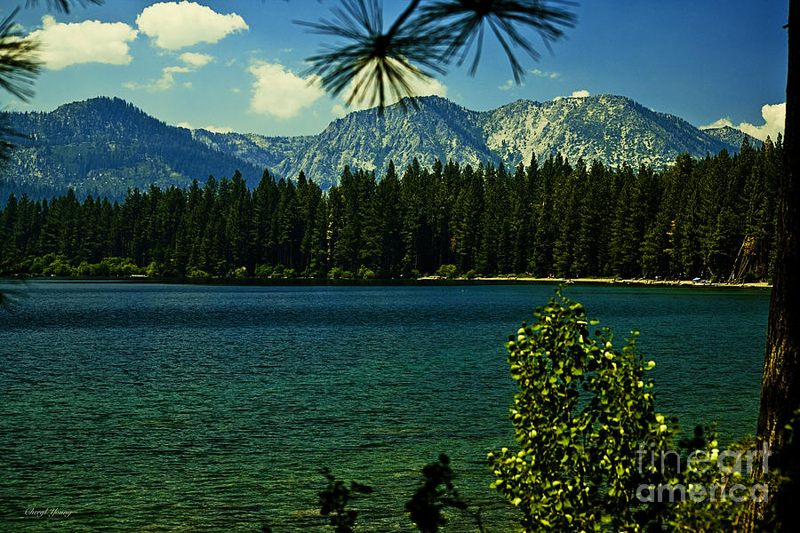 Fallen Leaf Lake Photograph