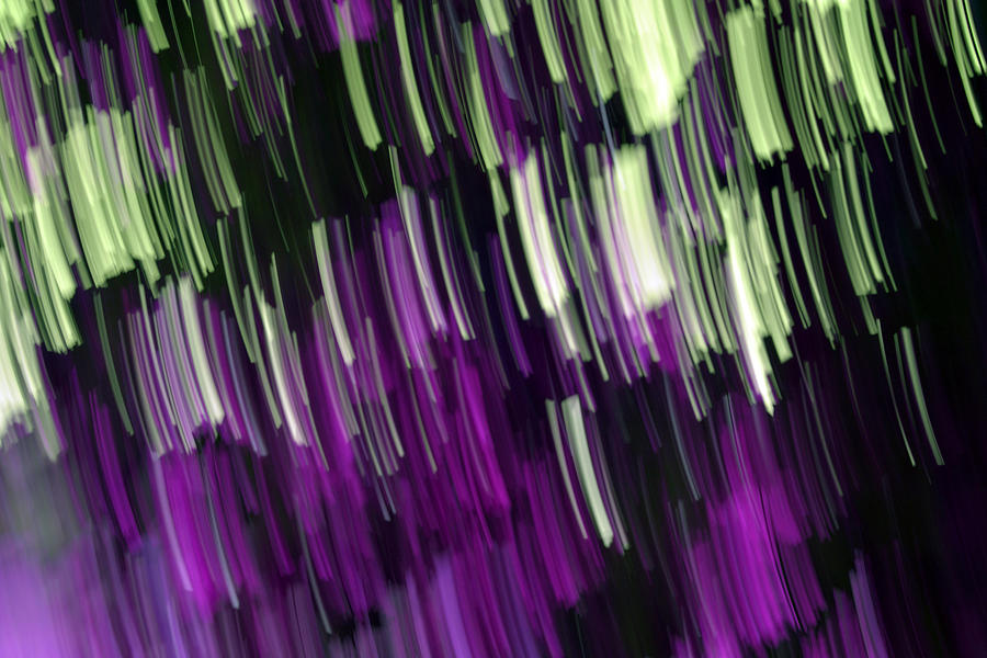 Falling Purple Photograph  - Falling Purple Fine Art Print