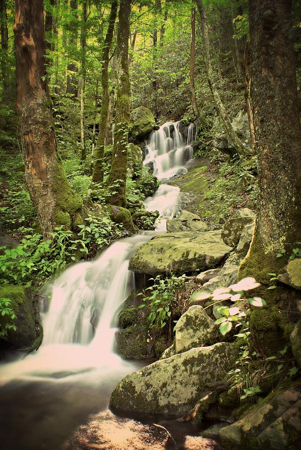 Waterfall Photograph - Falls In The Smokies by Marty Koch