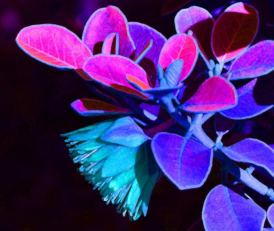 Fantasy Tamala Rose Abstract Photograph
