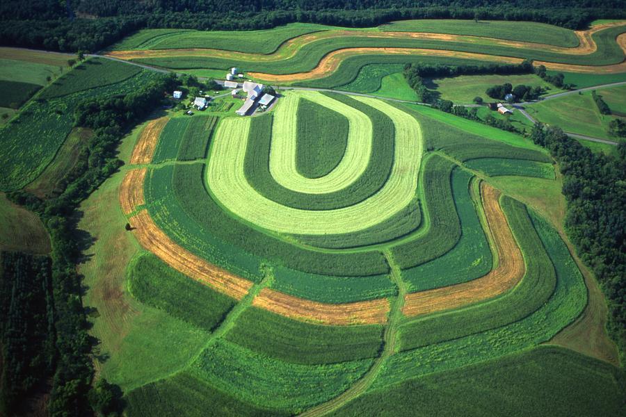Farm Aerial Designs Photograph - Farm Greens And Hillside Contour Plowing by Blair Seitz